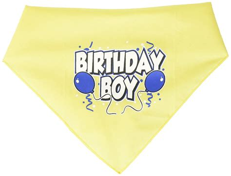 birthday bandana mirage pet products birthday boy screen print bandana for pets small