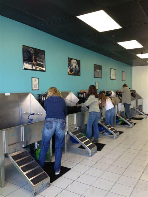 self serve wash 1000 ideas about wash on washing