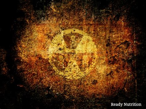 Ardium Hd Ready 5 foods that help to naturally prevent radiation poisoning