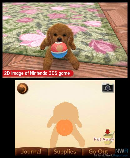 nintendogs and cats golden retriever breeds nintendogs cats preview
