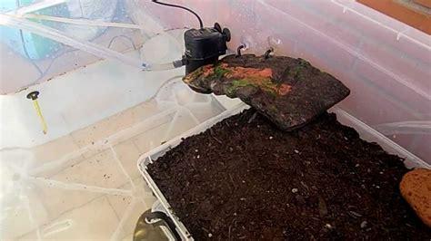 per tartarughe acquaterrario per tartarughe fai da te