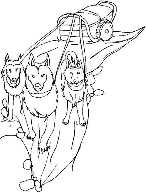 snow dogs coloring pages dog sled 8 transportation printable coloring pages