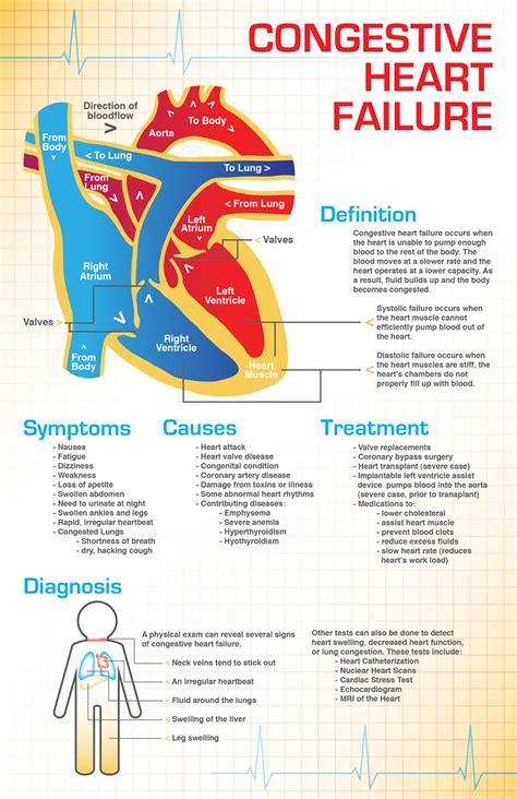congestive heart failure chf nursing care plan management congestive heart failure management healthflexhhs com