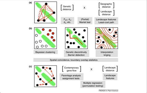 Landscape Genetics Landscape Genetics Of Plants Trends In Plant Science