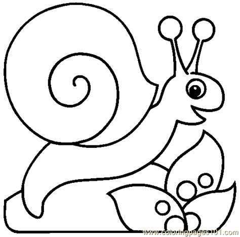 snail coloring page 08