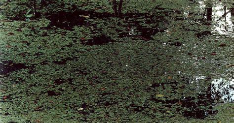 axel hutte axel h 252 tte fecit signed axel h 220 tte roland m 214 nig