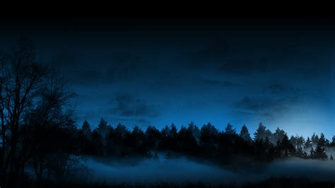 darkness beautiful dark themes dark forest wallpaper dark background photography forest