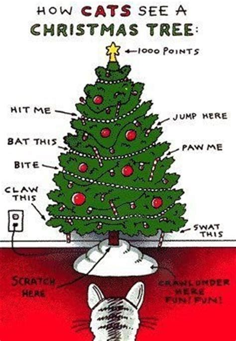 funny cats christmas tree and cat