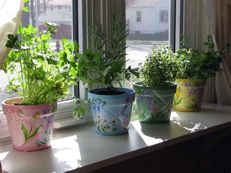indoor kitchen herb gardens just in time for spring pictures of house plants and indoor gardens indoor
