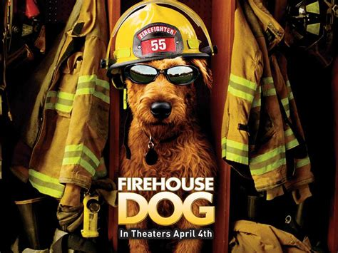firehouse dog house download firehouse dog wallpaper 1024x768 wallpoper 134208