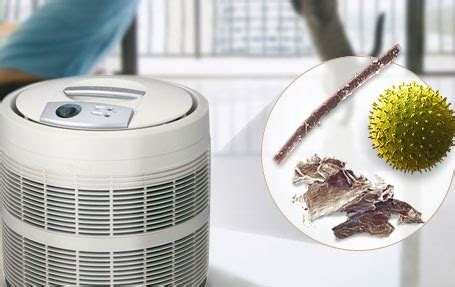 global residential air purifier market 2024 outlook forecast trends insights demand analysis
