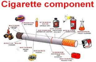 nicotine free expository essay samples and examples