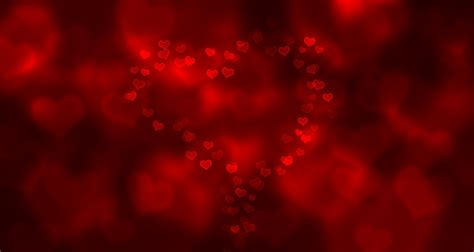 Tiger Upholstery Fabric Free Illustration Love Bokeh Red Valentine Free