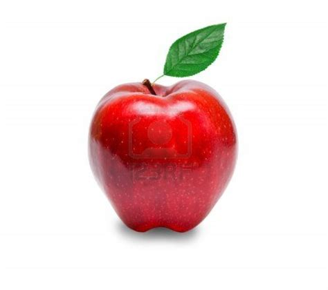 Buah Apel 3 manfaat buah apel yang