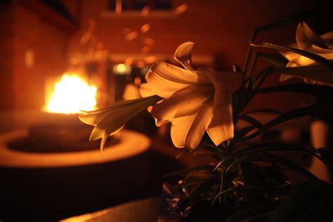 Lucernarium Easter Vigil St Patrick Ruth E Hendricks Paschals Lights