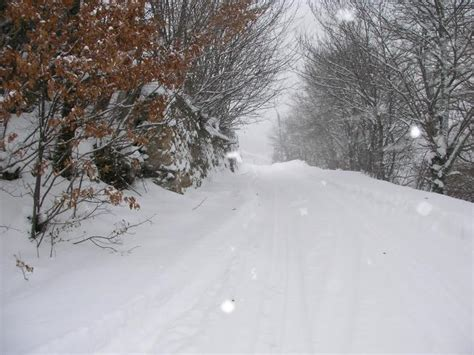 imagenes de paisajes con nieve fotos de zamora paisajes de nieve