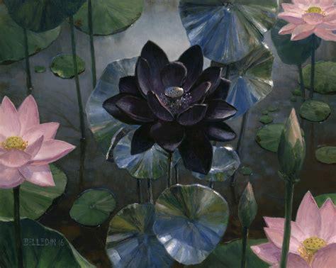 back lotus push and pull black lotus