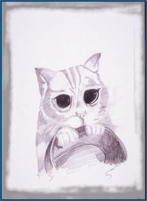 imagenes de gatitos blancas tiernas the gallery for gt dibujos a lapiz faciles de amor