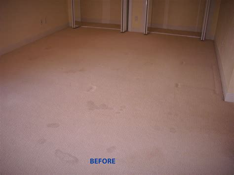 upholstery cleaning houston carpet cleaning houston tx 713 714 0940