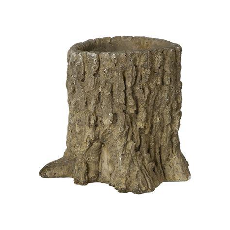 tree stump tree trunk pot terrain