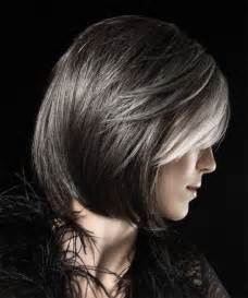 silver highlights on dark hair short hairstyle 2013