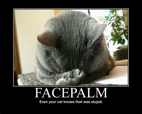 Facepalm Meme - my inner fairy doh i knew that face palm moment