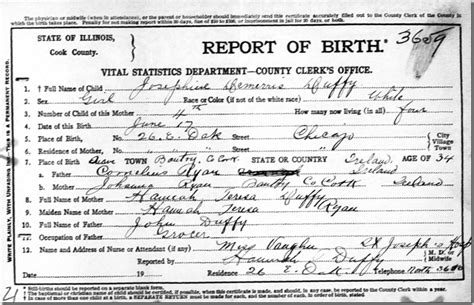 Birth Records Illinois Cook County The Ancestry Insider Jo Duffy S Darned Confusing Birth