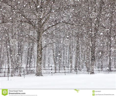 April Showers Or April Snow by April Snow Showers Royalty Free Stock Photography Image