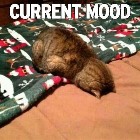 Mood Meme - the 15 funniest current mood memes mandatory