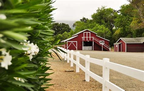 Detox Center In Napa Valley Ca by Top Addiction Rehab In Northern California