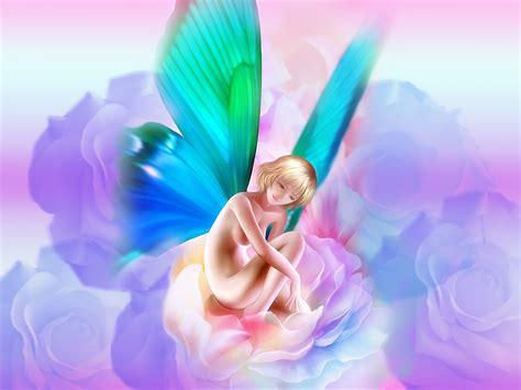 imagenes de hadas blancas images elfes papillons1 page 5