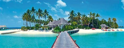 consolato maldive il sogno di lavorare alle maldive report report