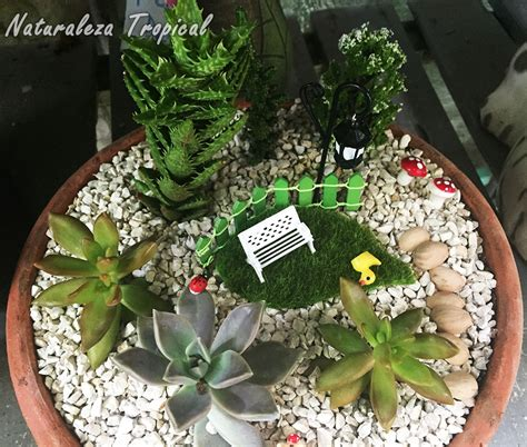decorar con plantas suculentas naturaleza tropical galer 237 a de arreglos con plantas