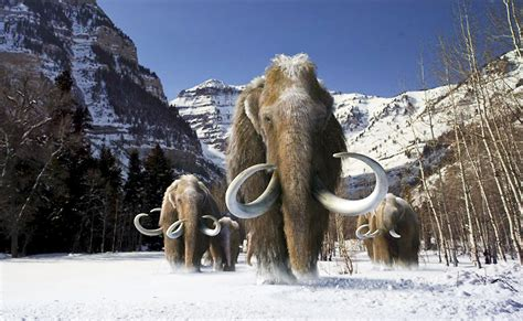 wooly mammoth ice age movie review titans a great view of ice age