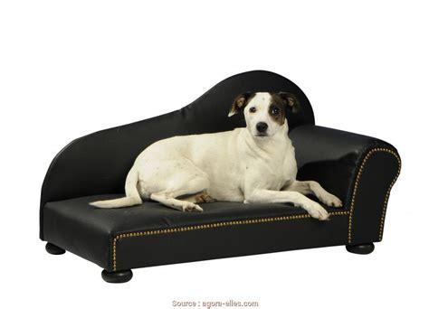 divanetto per cani elegante 6 divanetto cani pallet jake vintage