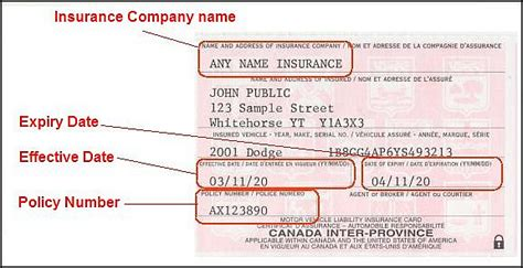 Renew A Vehicle Registration Government Of Yukon Eservices Canadian Auto Id Card Template