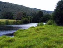 river side farm house riverside farm house knysna south africa hotels accommodation lodges cing and
