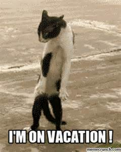 On Vacation Meme - i m on vacation