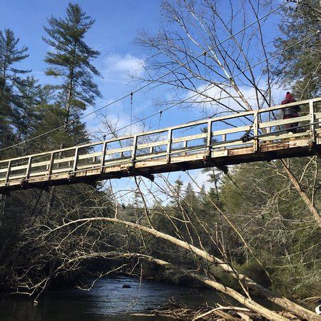 swinging bridge blue ridge ga toccoa river swinging bridge blue ridge all you need