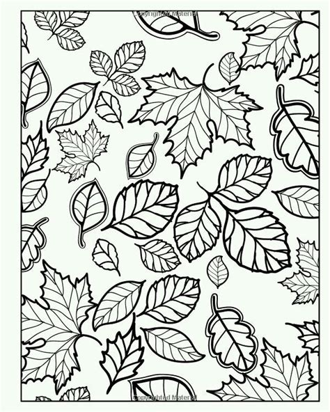 autumn landscape coloring pages 17 best images about adult colouring trees leaves
