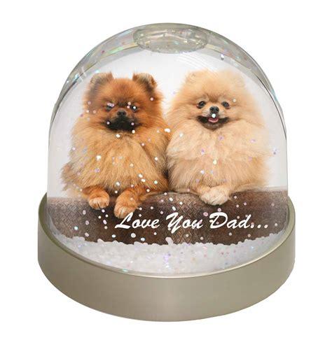 pomeranian gifts uk pomeranian dogs you snow dome globe waterball
