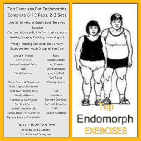 healthy fats for endomorph 17 best endomorph type dressing diet images on