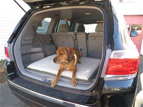 air mattress travel bed for pet puppy bestinflatableairbed