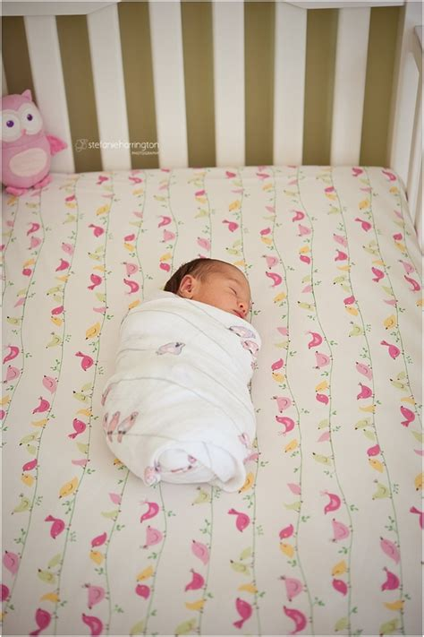 How To Make A Newborn Sleep In Crib by Baby Birds Newborn Photographer Washington Dc 187 Dc Area