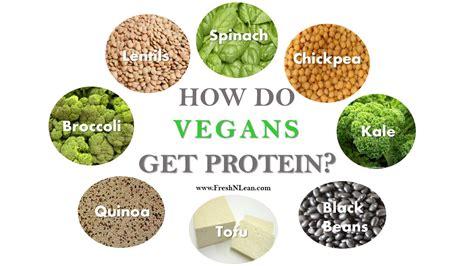 protein vegan vegan diet how vegans get protein fresh n lean