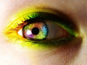 yellow eye color yellow wallpapers and images wallpapers pictures