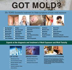 Black Mold Detox by 8 Signs You Need A Black Mold Detox Bem Estar E Sa 250 De