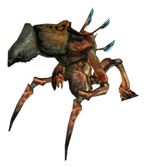 doodlebug insect wiki antlion guard concept bomb