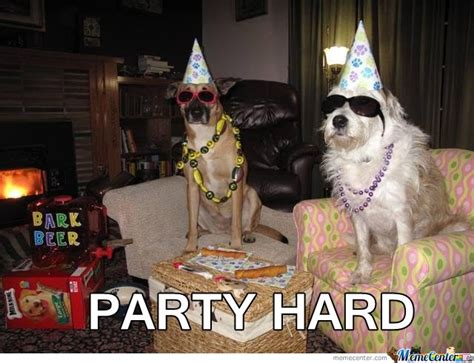 Puppy Birthday Meme - dog party by jsceb meme center