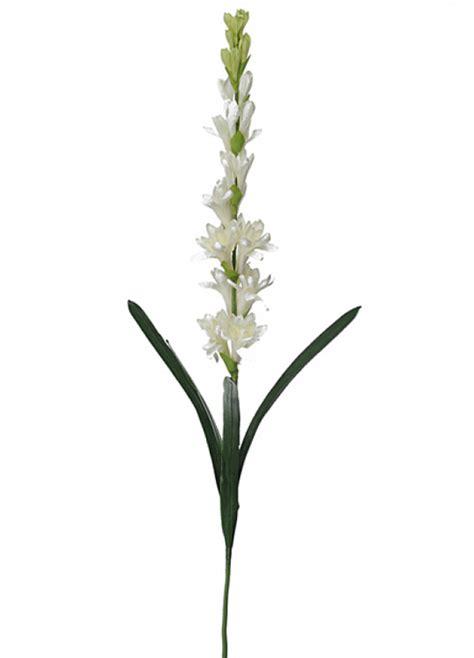 fiori di loto riccione tuberosa artificiale fior di loto riccione
